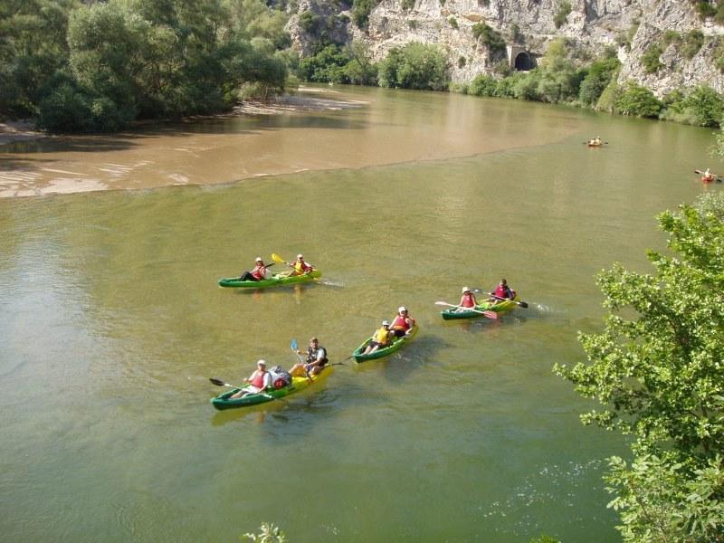 River Nestos, Toxotes
